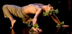 hawaii-theatre-coming-october-2016-events- 3.jpg